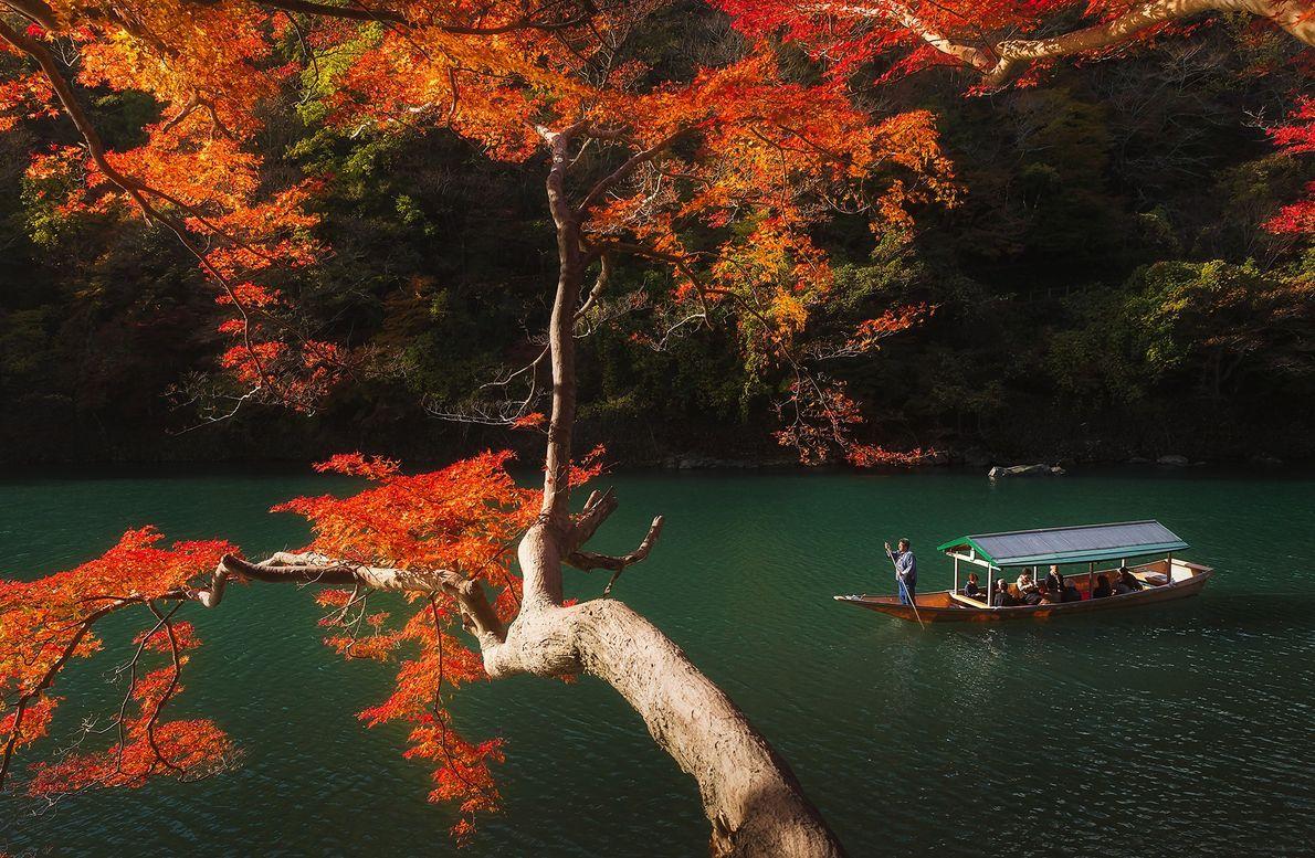 Disfruta de las vibrantes hojas de otoño en un paseo panorámico en bote por el río ...