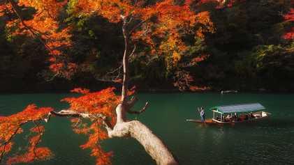 Conoce 20 atractivos increíbles de Kioto