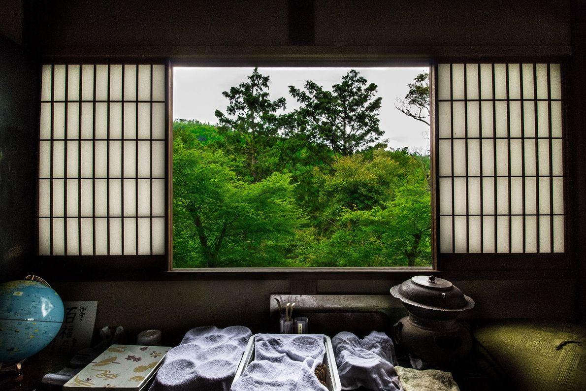 Las ventanas Shoji de una machiya, una casa tradicional japonesa, enmarcan la vista matinal del verde ...