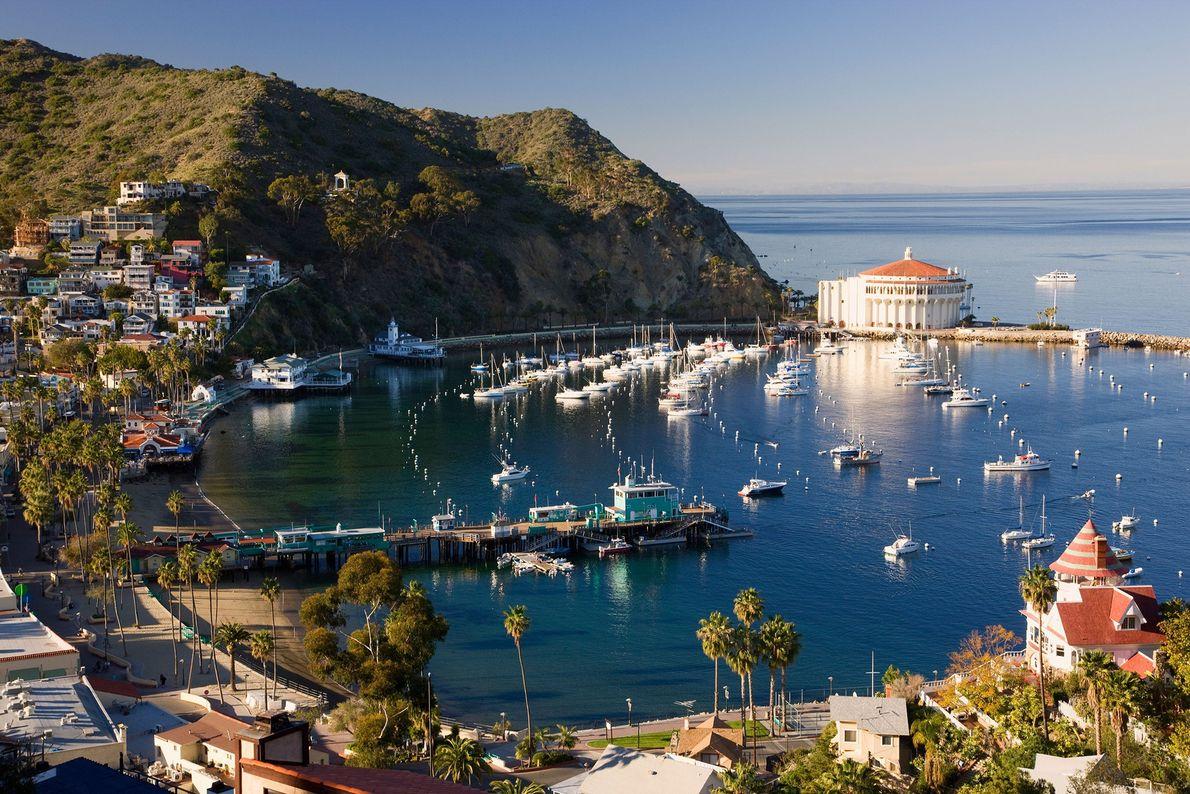 Isla Catalina, Estados Unidos