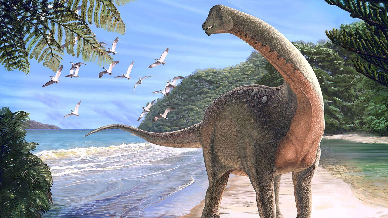 Dinosaurio enorme encontrado en Egipto es el primero en su tipo