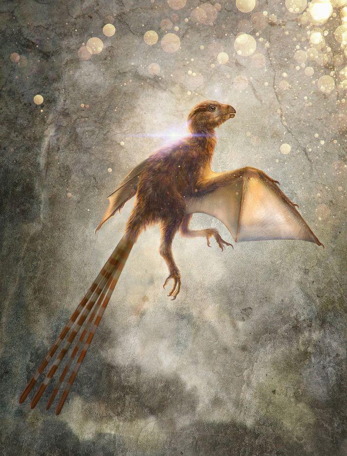 Esta ilustración muestra a un Ambopteryx longibrachium, una nueva especie de dinosaurio terópodo no aviar que ...
