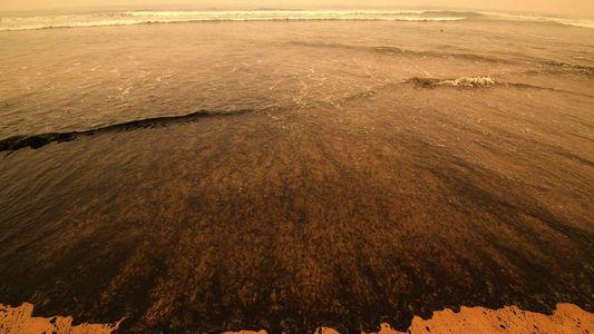 Los intensos incendios de Australia traerán grandes problemas con el agua potable