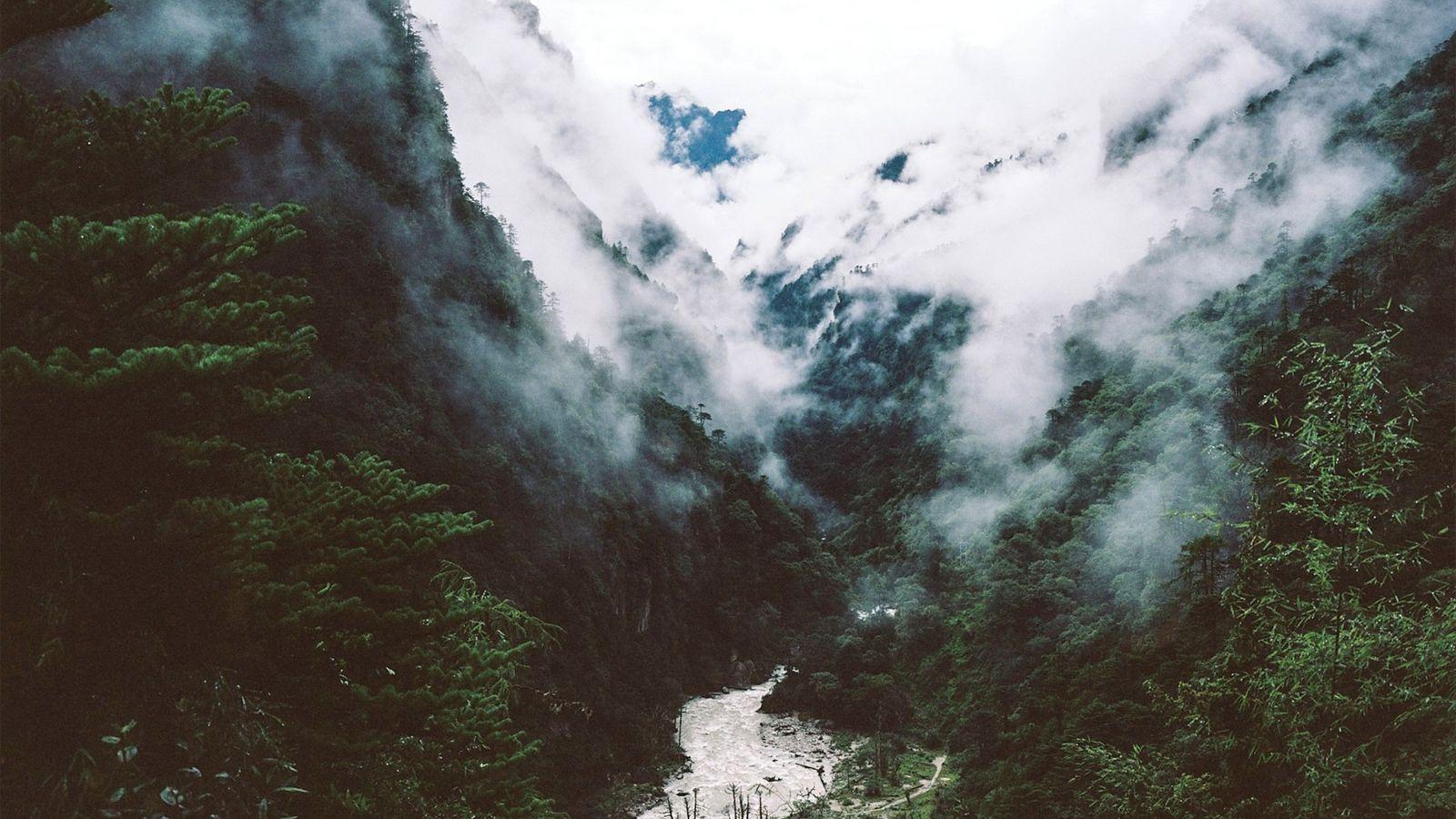 Bután es uno de los últimos puntos calientes de biodiversidad que quedan en el planeta. Aproximadamente ...