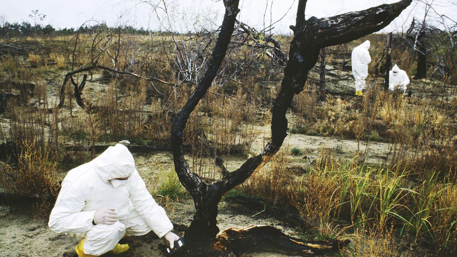 Se cree que la limpieza de la zona que rodea el desastre nuclear de Chernóbil continuará ...