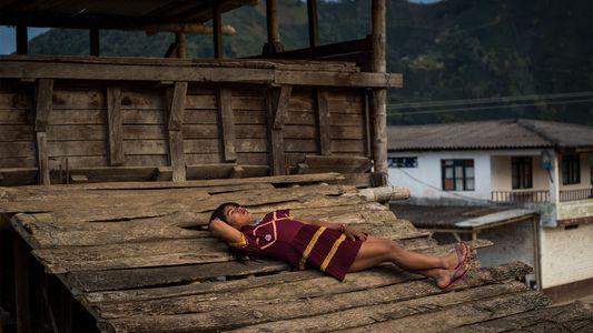 Mujeres trans indígenas que han encontrado refugio en las plantaciones de café de Colombia