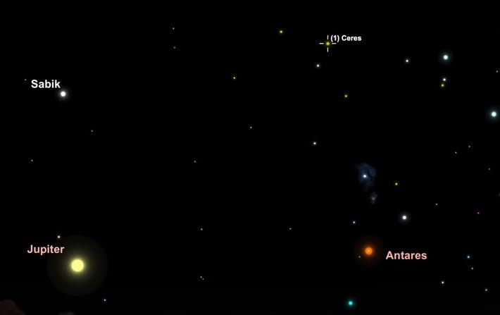 Buscá el asteroide Ceres mientras se mueve a través de las constelaciones Ophiuchus y Scorpius el ...