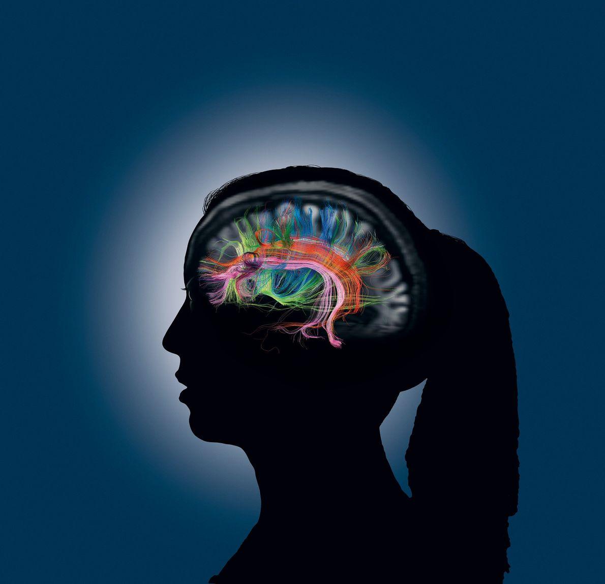 Cuando accedemos a un recuerdo, muchas partes de nuestro cerebro se comunican rápidamente entre sí, representadas ...