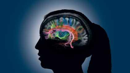 Memoria humana: cómo creamos, recordamos y olvidamos los recuerdos