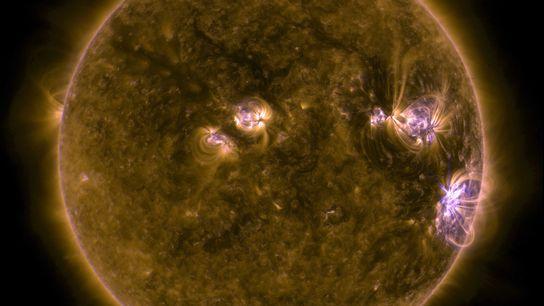 Una imagen ultravioleta del Sol, tomada por el Solar Dynamics Observatory de la NASA, muestra una ...