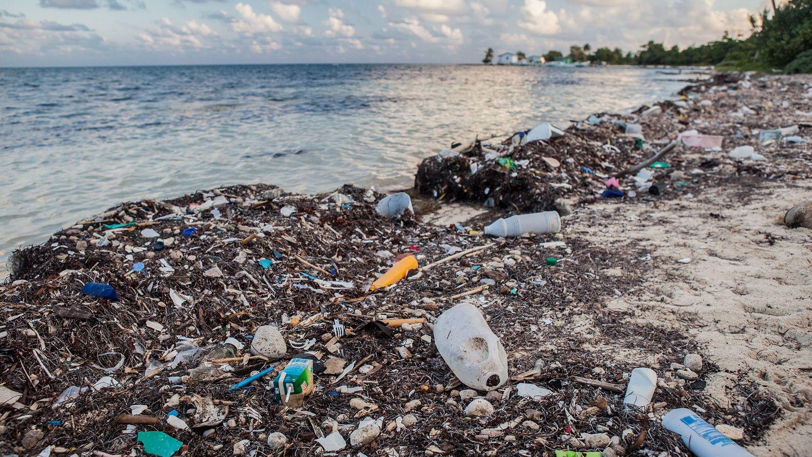 Anualmente, se vierte al océano el equivalente de cinco bolsas de mercado de residuos plásticos por ...