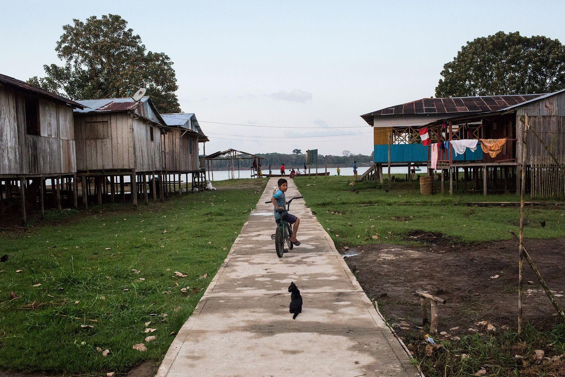 Un niño y un gato se detienen en un camino en Puerto Alegría, una pequeña comunidad ...
