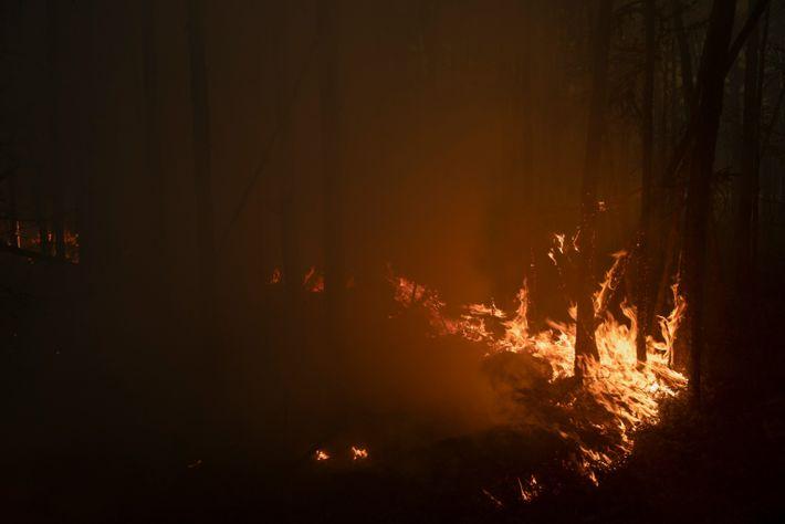 Siberian fires 010
