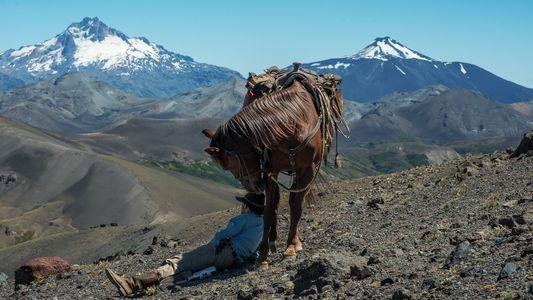 Imágenes: admira la cultura gaucha en la Patagonia - Parte 2