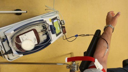 Una bolsa de sangre se llena durante una donación.