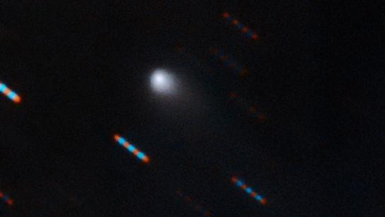 Hace poco, el observatorio hawaiano Gemini obtuvo una imagen compuesta en dos colores del 2I/Borisov, el ...