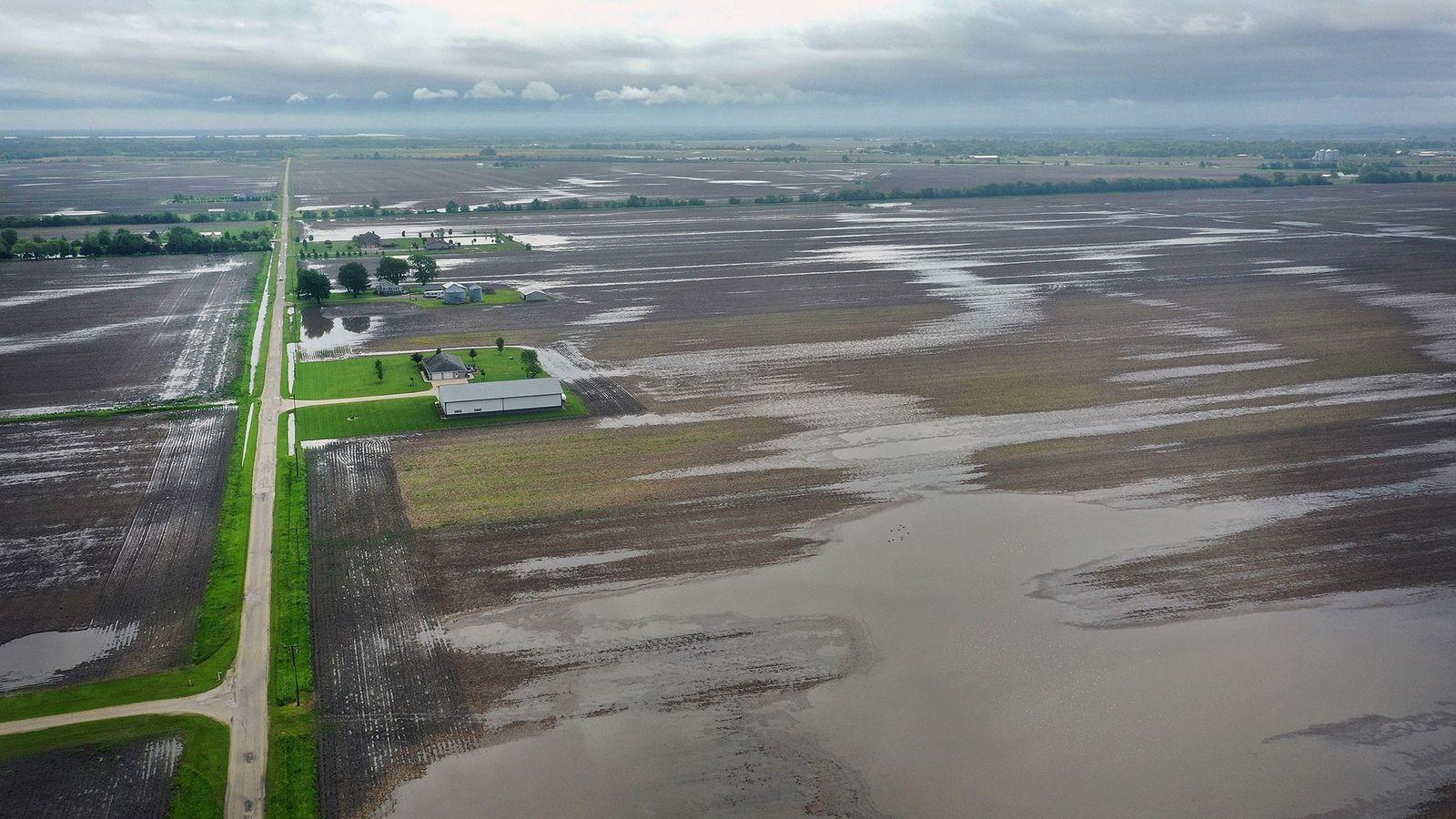 Piletas de agua en los campos de cultivo empapados por la lluvia del 29 de mayo ...