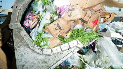 Las personas desperdician más comida de la que creen. Pero, ¡hay solución!