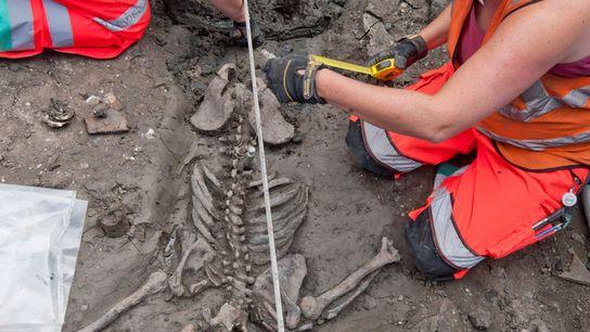 Los arqueólogos de Londres estudian el esqueleto de un varón adulto al principio de la treintena ...