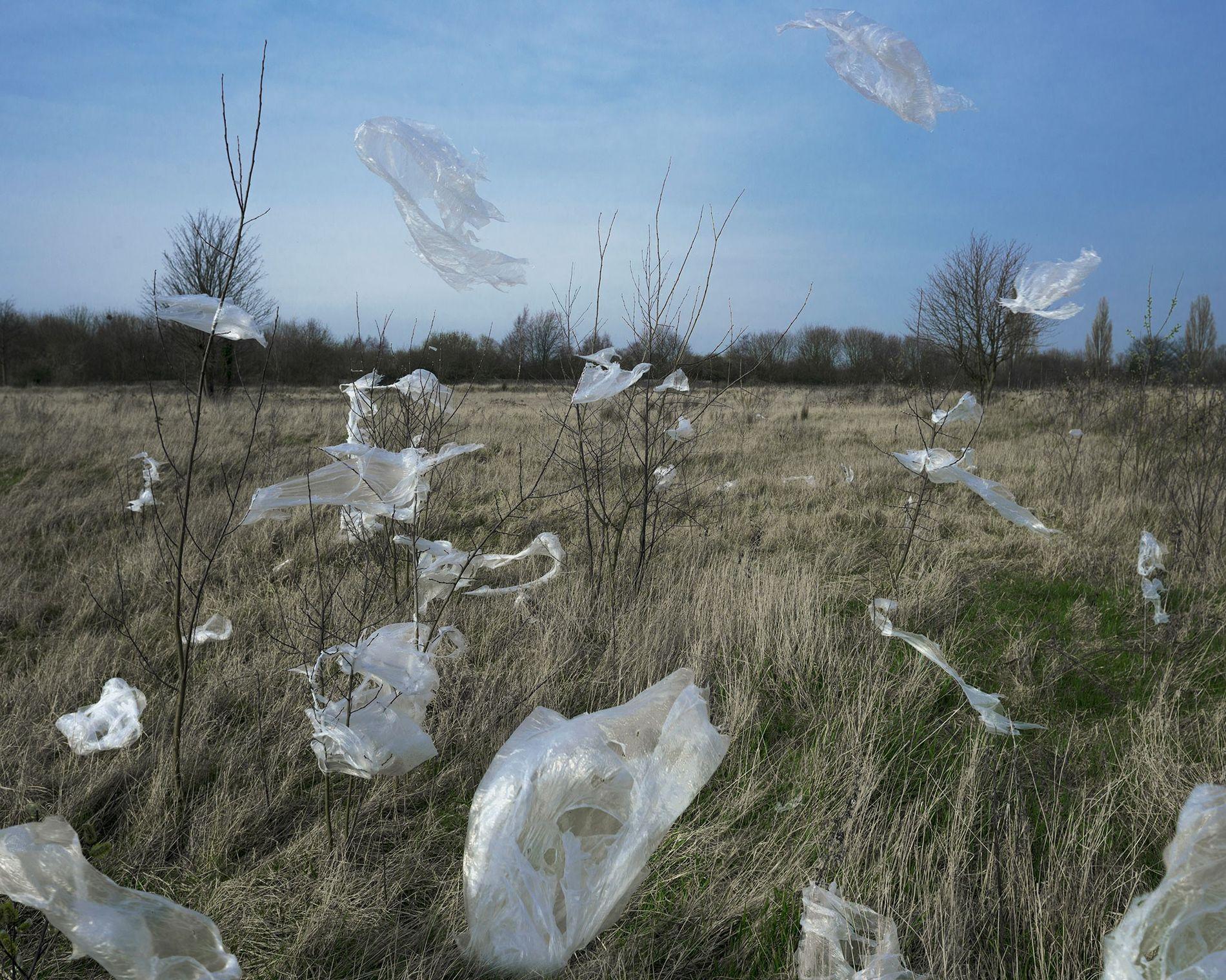 Pedazos de plástico vuelan sobre la Tierra y, eventualmente, se descomponen en pequeñas partículas.