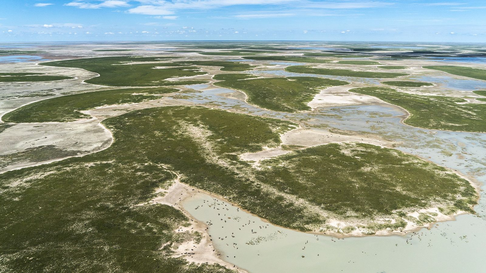 Un polémico nuevo estudio alega que los antiguos humedales al sur del río Zambeze fueron el ...
