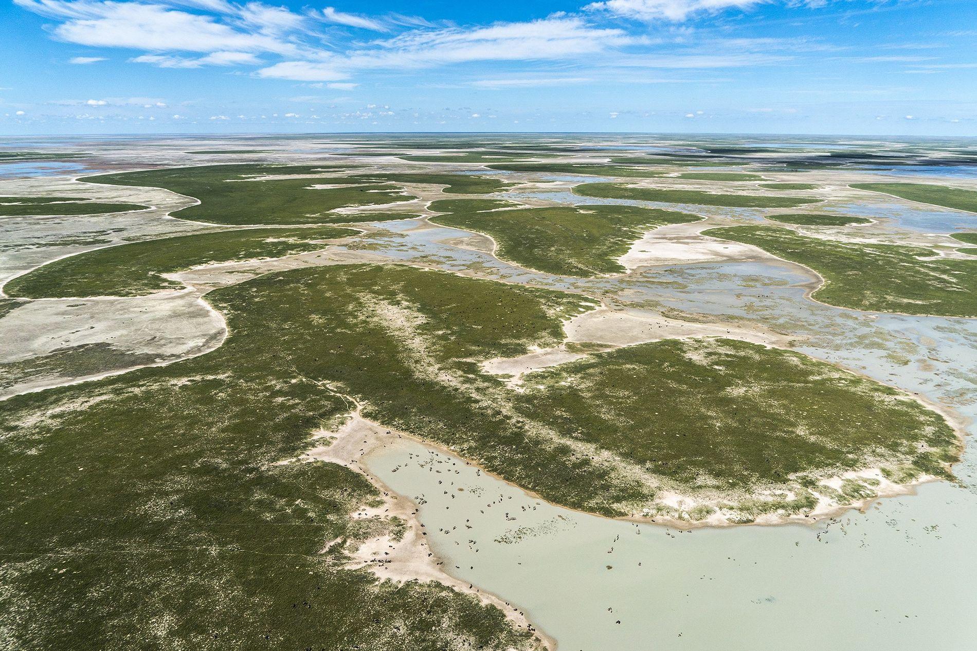 Un polémico nuevo estudio alega que los antiguos humedales al sur del río Zambeze fueron el oasis de dónde emergieron todos los seres humanos modernos. Hoy, la región es una de las salinas más grandes del mundo conocida como los salares de Makgadikgadi.