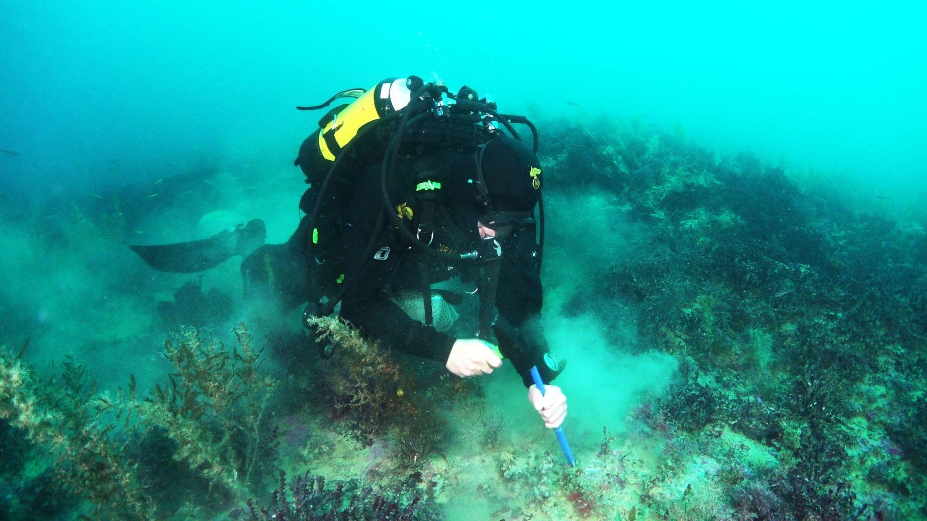 Un buzo del ejército italiano, Carabinieri, recolecta rocas de uno de los volcanes recién descubiertos, Actea, ...