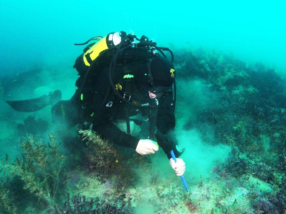 Descubren seis volcanes submarinos cerca de las costas de Sicilia