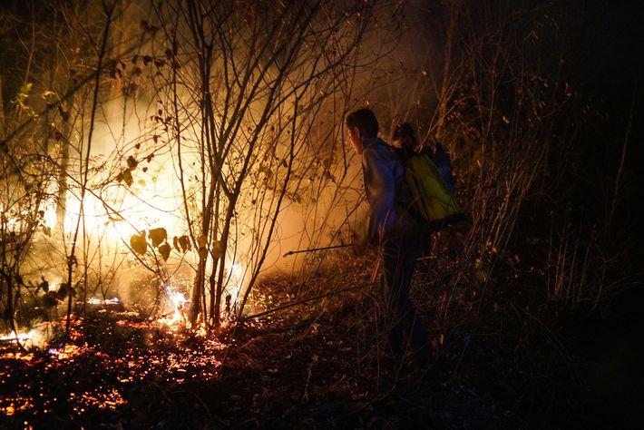 Jóvenes voluntarios de Roboré, una pequeña ciudad a unos 32 kilómetros de Aguas Calientes, intentan apagar ...