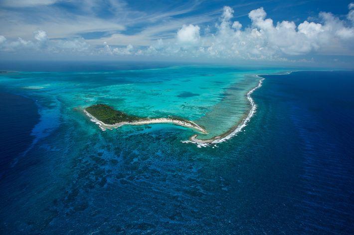 El monumento natural del cayo Half Moon se encuentra en medio del arrecife mesoamericano, de más ...