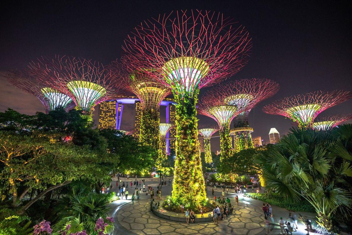 """Estos """"Superárboles"""", jardines verticales cubiertos con flora que funcionan con energía solar, se encuentran en los ..."""
