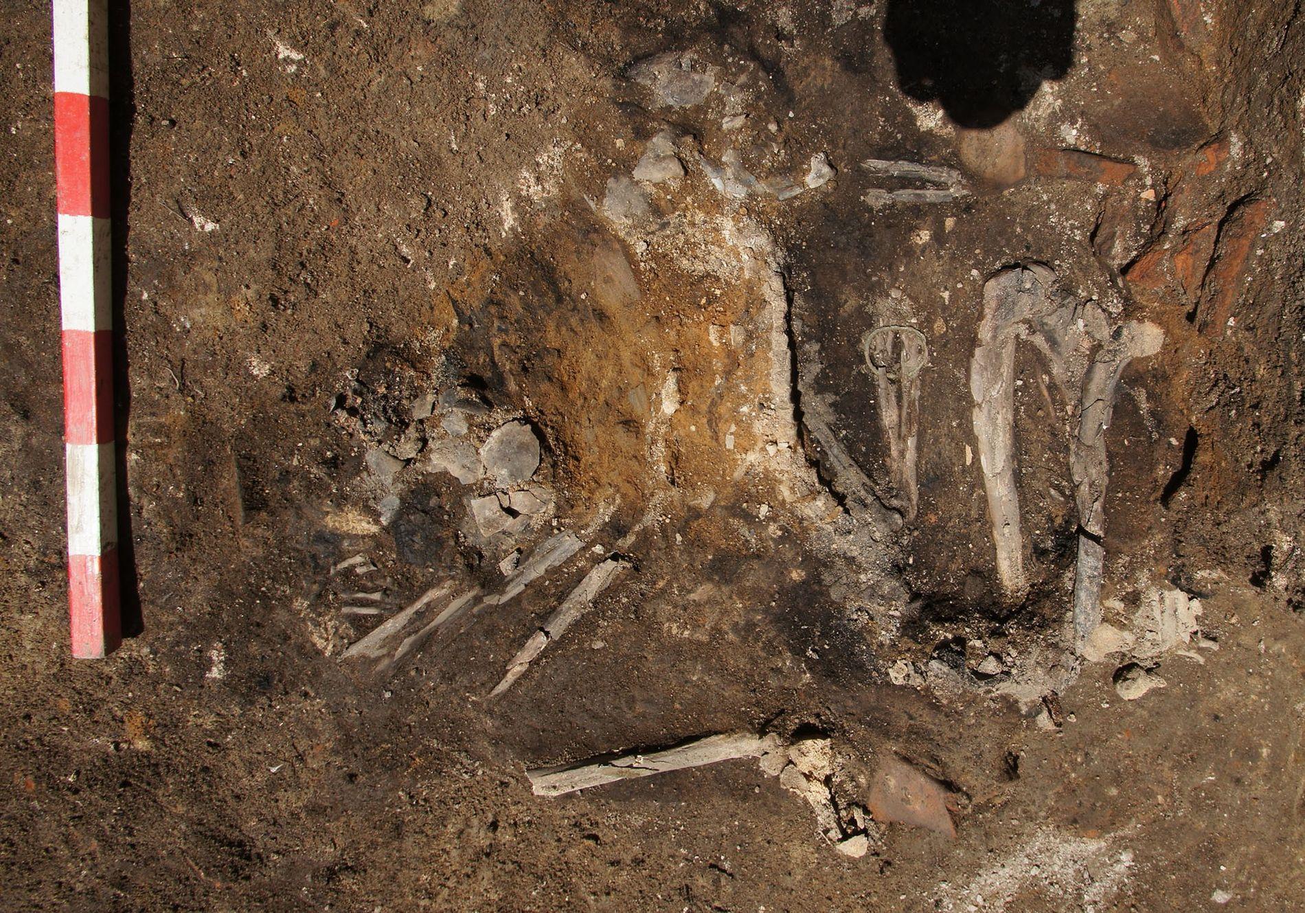 El esqueleto de una mujer adulta fue descubierto en un suelo que data del 251 d.C. ...