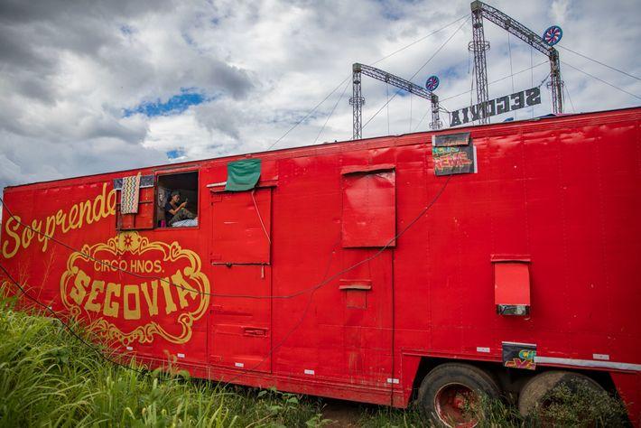 Los intérpretes conforman un variado grupo que vive en pequeños habitáculos en los remolques del circo. ...