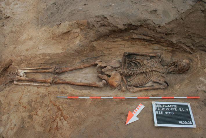 Un entierro medieval en un cementerio de Berlín revela a un hombre enterrado boca abajo. Los ...