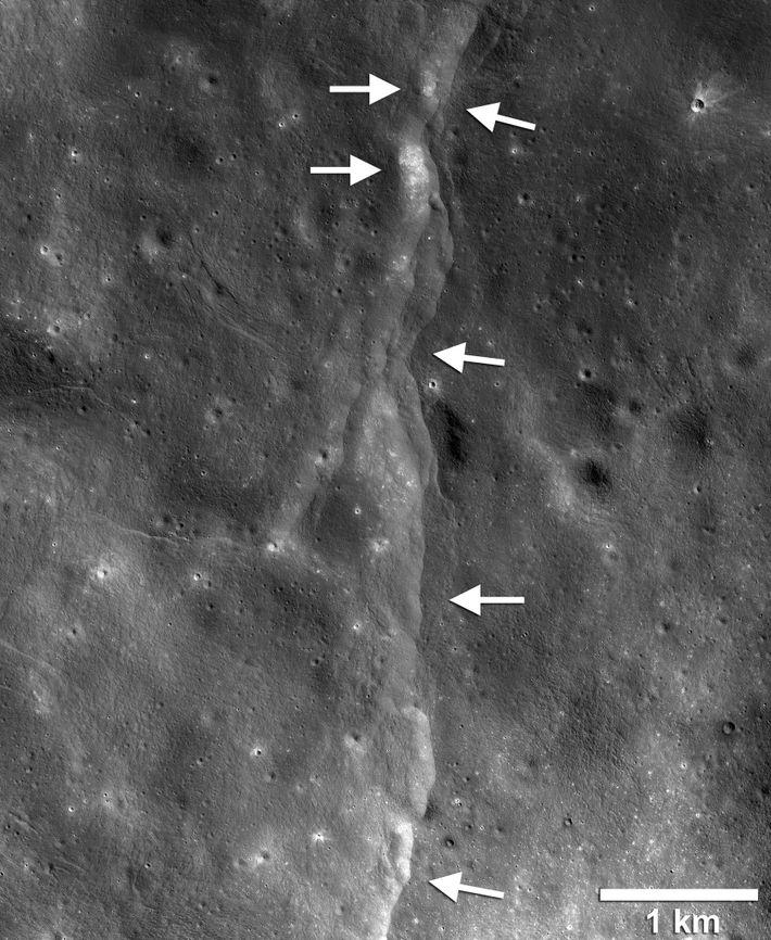 Este mapa sísmico creado a partir de las imágenes de la NASA muestra el movimiento esperado ...
