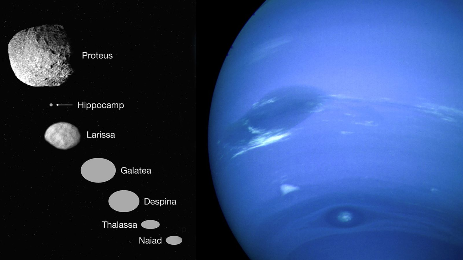 En 1989, el Voyager 2 voló a Neptuno, a la derecha, y vio seis pequeñas lunas ...