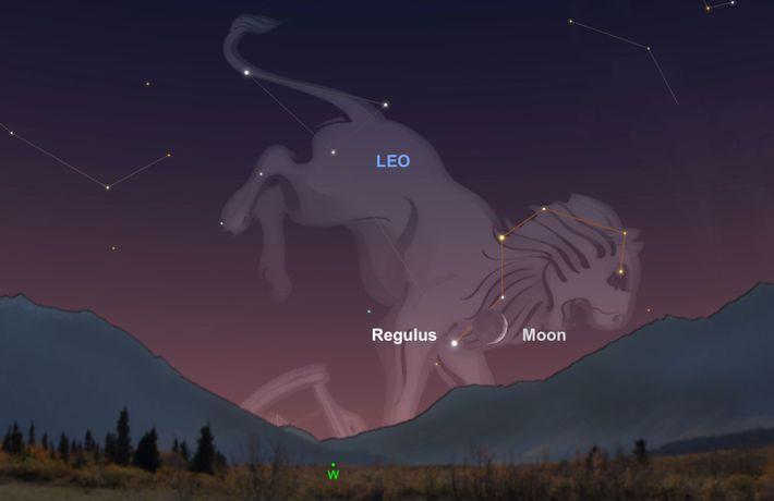 Observa la luna creciente para guiar tu mirada hacia la estrella Regulus cerca del horizonte sudoeste ...