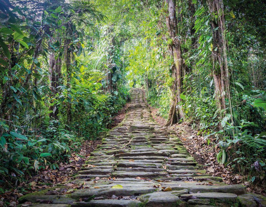 Esta escalera en Teyuna era parte de un sistema de escaleras y caminos pavimentados que unían ...