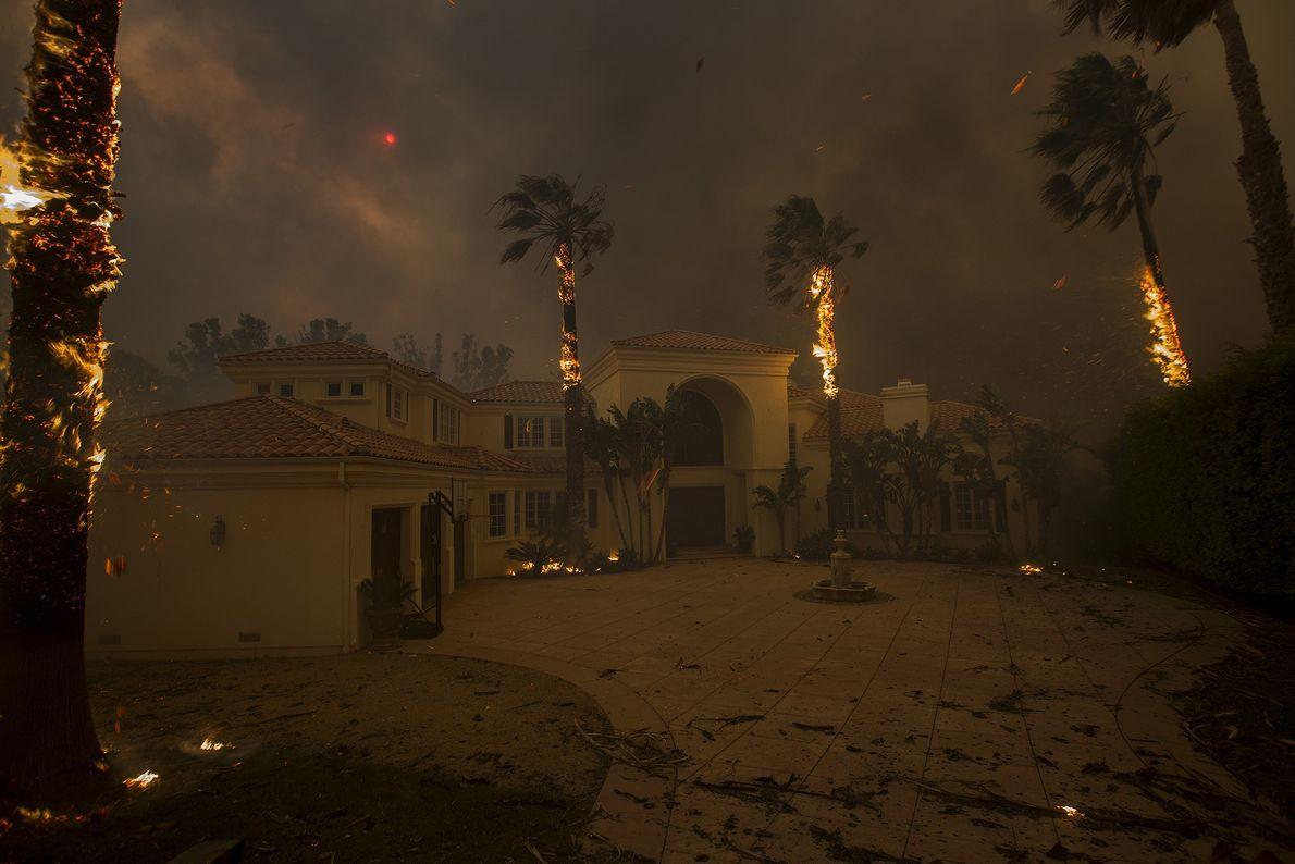 Las ascuas caen de las palmeras ardiendo y el sol se oculta por el humo cuando ...