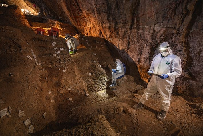 Los científicos comparan notas sobre la estratigrafía de la cueva Chiquihuite en preparación para tomar muestras ...