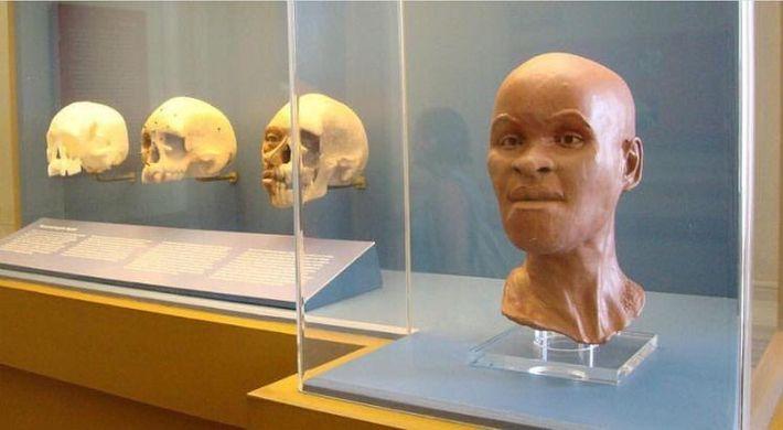 Encontrado en la gruta de Lapa Vermelha, en Minas Gerais, el cráneo de Luzia es uno ...