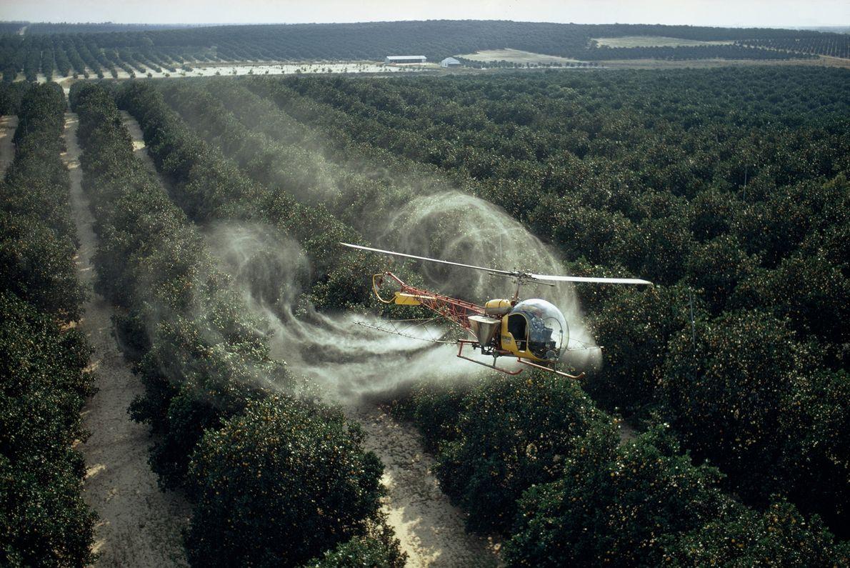 Antes de la Ley Federal de Control de Pesticidas Ambientales en 1972, los reguladores no estaban obligados ...