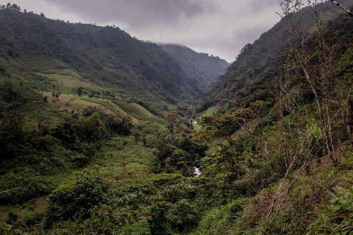 Cuando Pascual Bautista regresó a Yalambojoch desde los Estados Unidos, compró este terreno. Fue una de ...