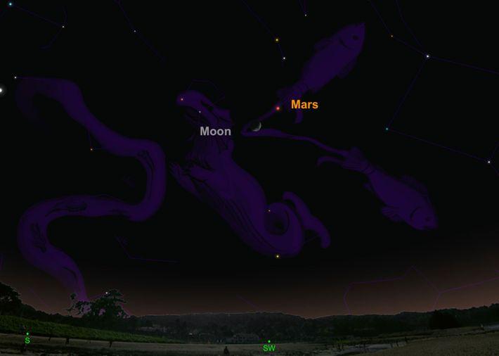 Busca al planeta rojo que estará posado cerca de la luna creciente el 10 de febrero.
