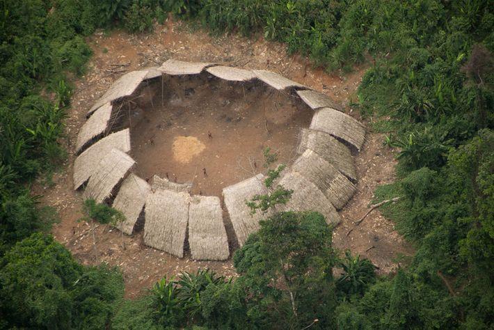 Los habitantes indígenas de Moxihatetema, en el corazón del territorio yanomami, estado de Roraima, han evitado ...