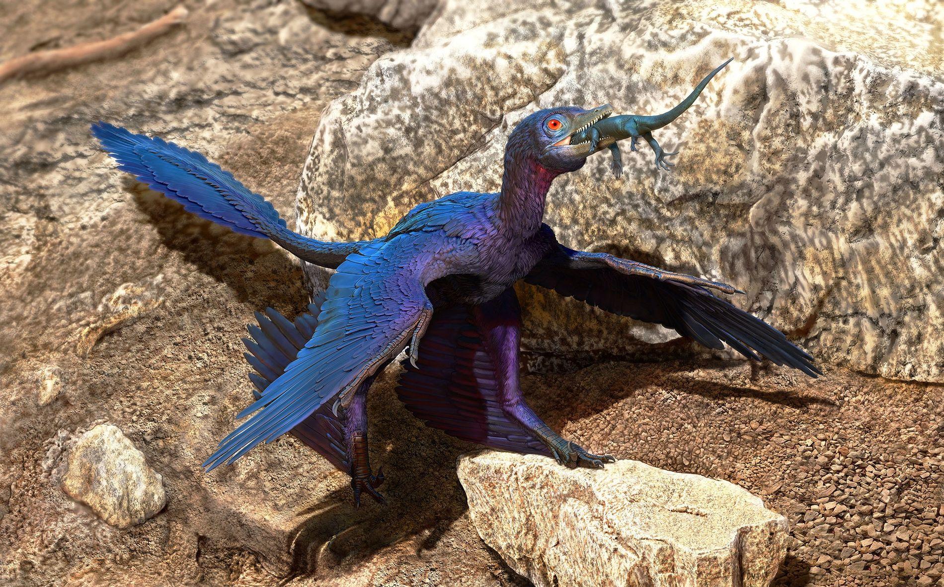 Hace más de 120 millones de años, en el actual nordeste de China, un dinosaurio con ...