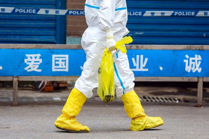 Un trabajador se lleva una salamandra gigante que acaba de atrapar en Huanan Seafood Market, clausurado ...