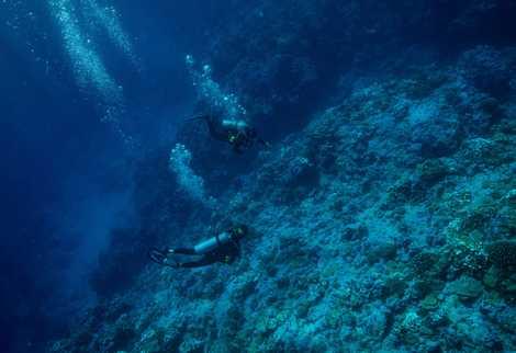 Los miembros de la expedición Allison Fundis y Samantha Wishnak bucean en el área de búsqueda ...