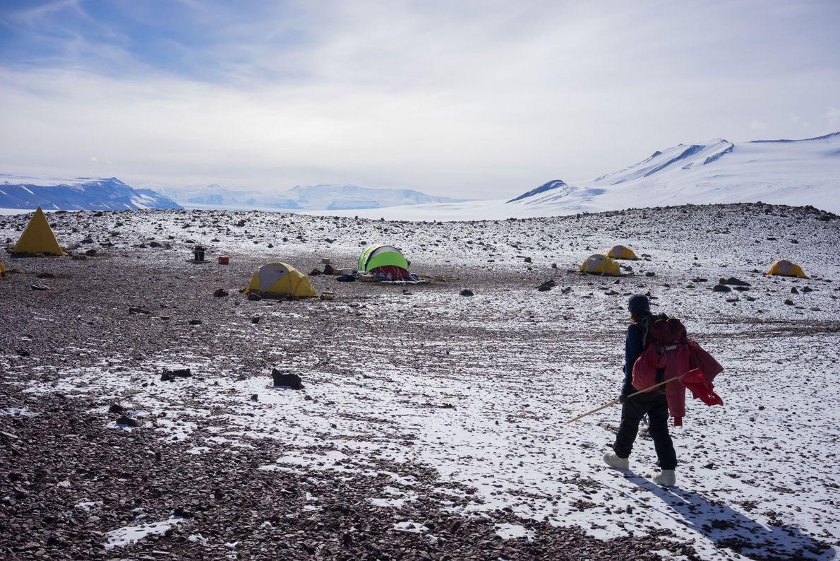 La científica Patricia Ryberg regresa al campamento Graphite Peak luego de un día de recopilar fósiles ...