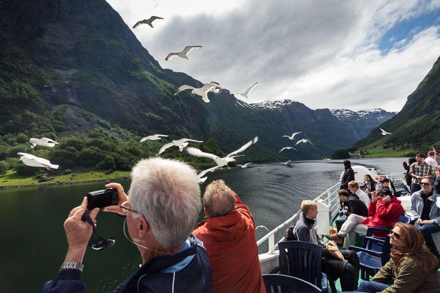 Los turistas avistan aves entre los fiordos de Noruega.